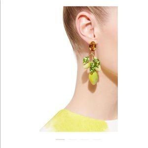 Authentic Dolce & Gabbana Earrings